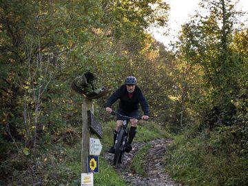 Mountainbiker in Aktion an Steilhang Enkirch